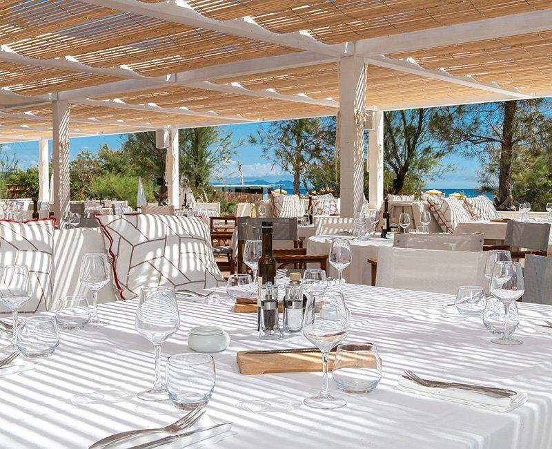 table-nature-tropicana-la-plage