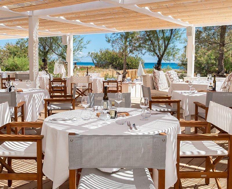 table-sous-les-pins-parasol-tropicana-la-plage